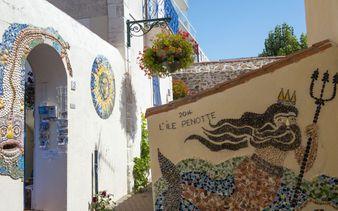 Ile Penotte - quartier orné de coquillages -crédit photo Antoine Martineau - Ile Penotte - quartier orné de coquillages -crédit photo Antoine Martineau