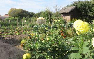 Journées européennes du Patrimoine - Les Jardins des Marchais
