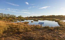 Visite guidée : L'Histoire du Marais