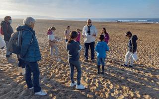 Stage scientifique : À la découverte du sable !