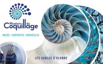 Museum du Coquillage - Les Sables d'Olonne - Museum du Coquillage - Les Sables d'Olonne