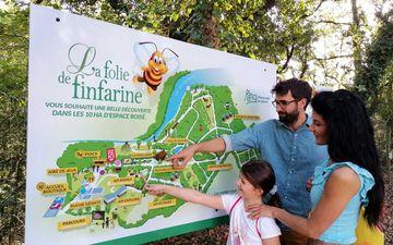 La Folie de Finfarine (life of bees)