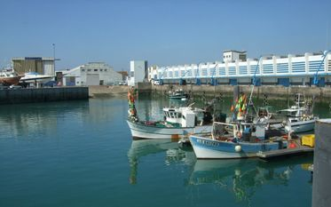 Small-scale fishing harbour