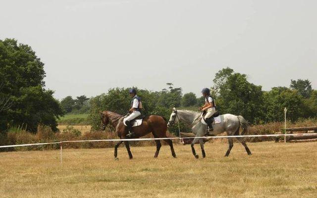 La Brissonière Horse Farm