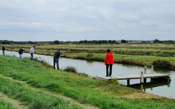 Fishing in the marshes