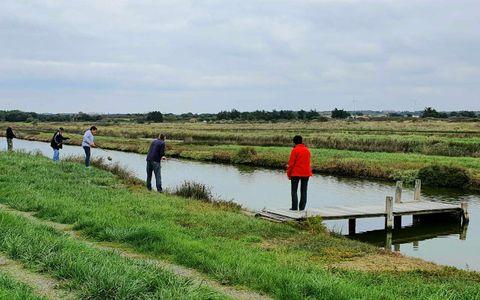 Pêche à la ligne dans les marais