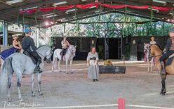"""Spectacle équestre """"Le trésor d'Antarès, les 4 chevaux de feu"""""""