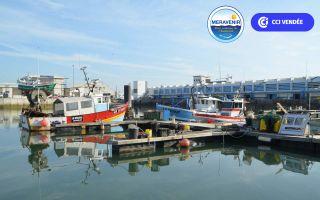 Visite guidée de la criée et du port de pêche