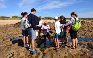 Découverte du rivage de la Paracou