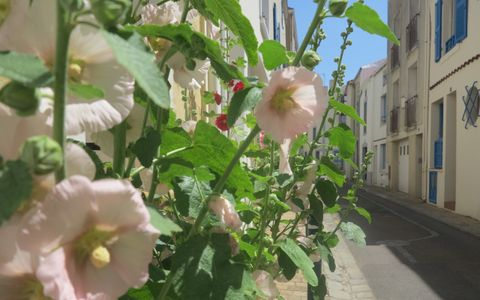 Au détour d'un quartier : le Passage - Visite Groupe