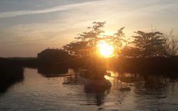 Randonnée nocturne - Kayak dans les marais