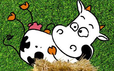Festival Saint Math'Humour