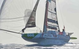 Mini Transat : Race of sailing