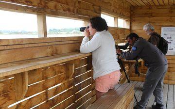 Observatory birds - Natural parc