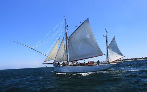 Journées européennes du Patrimoine - Sortie en mer du Mutin