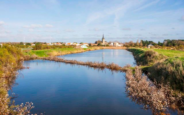 Salt marshes of Ile d'Olonne