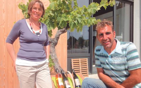 Vineyard Domaine des Granges